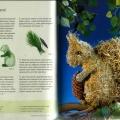 Игрушки из сена - Белка