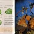 Игрушки из сена - Мышь