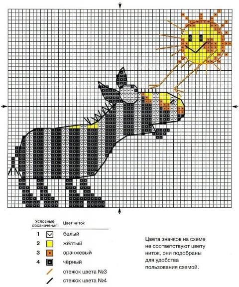 Зебра и солнышко