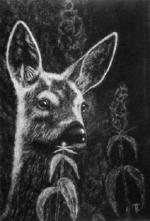 Картина из пуха Олень