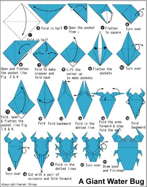 Оригами схема Жук. Увеличить